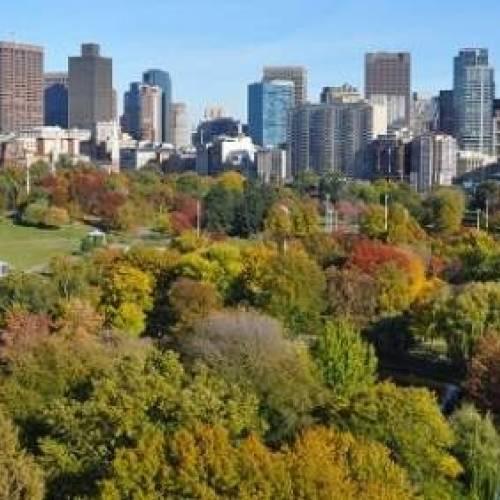 Parque de Boston