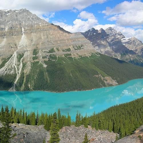 Peyto Lake en Banff, Canadá