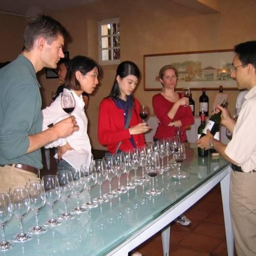Cata de vinos en una bodega, Burdeos