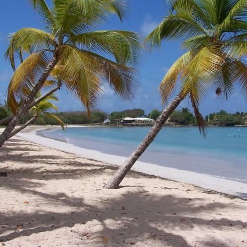Playa de las Salinas, Martinica