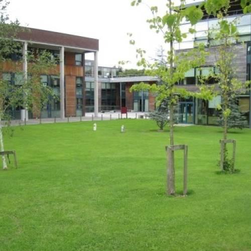 Campus UL